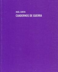 Raul Zurita: Cuadernos de guerra