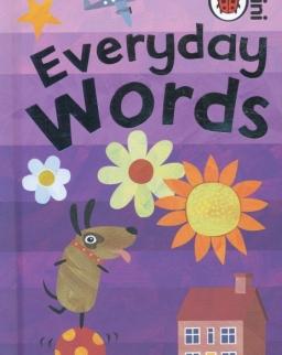 Everyday Words - Ladybird Minis