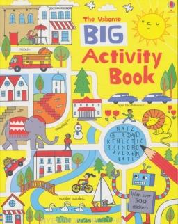 Usborne Big Activity Book