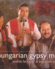 Hungarian Gipsy Music