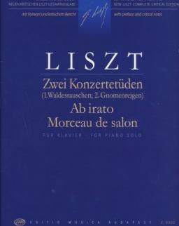 Liszt Ferenc: Ab irato - két koncertetűd (Manók tánca, Erdőzsongás)
