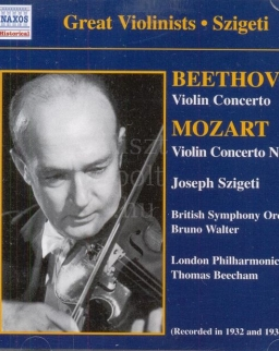 Ludwig van Beethoven/Wolfgang Amadeus Mozart: Violin Concerto
