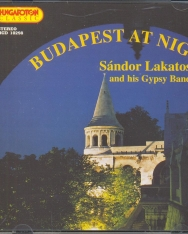 Lakatos Sándor: Budapest at night