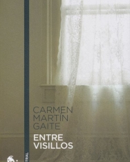 Carmen Martín Gaite: Entre visillos: 2 (Contemporánea)