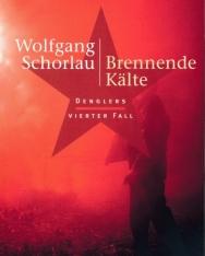 Wolfgang Schorlau: Brennende Kälte