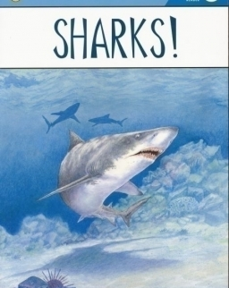 Sharks! - Puffin Young Readers - Level 3