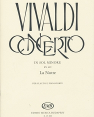 Antonio Vivaldi: Concerto for Flute