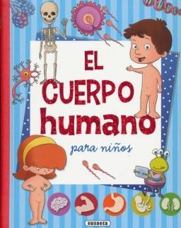 El cuerpo humano para ninos