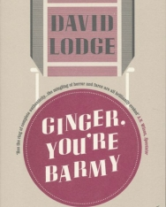 David Lodge: Ginger, You're Barmy