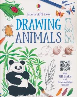 Usborne Drawing Animals