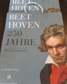 Papírtáska - Beethoven250