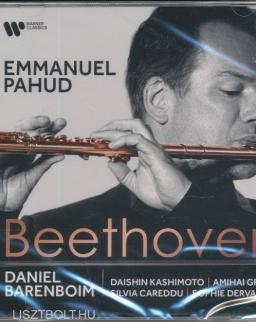 Ludwig van Beethoven: Sonata, Serenade, Trio Concertante