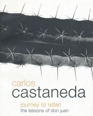 Carlos Castaneda: Journey to Ixtlan: Lessons of Don Juan