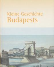 Kleine Geschichte Budapests