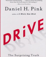 Daniel H. Pink: Drive - The Surprising Truth About What Motivates Us