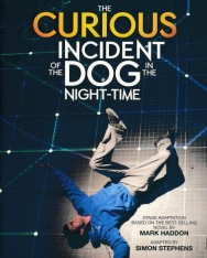 The Curious Incident of the Dog in the Night-Time (Stage Adaptation)