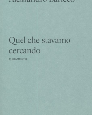 Alessandro Baricco: Quel che stavamo cercando