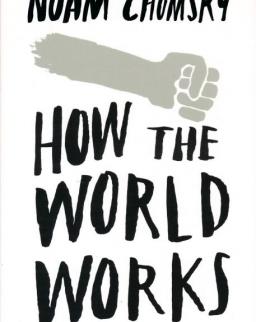 Noam Chomsky: How the World Works