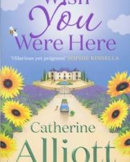 Catherine Alliott: Wish You Were Here