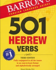 501 Hebrew Verbs - Barron's Foreign Language Guides - Third Edition