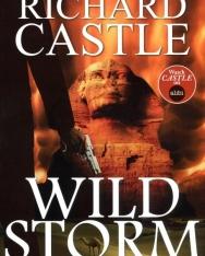 Richard Castle: Wild Storm (A Derrick Storm Thriller Book 5)