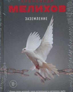 Melikhov Aleksandr Motelevich: Zazemlenie