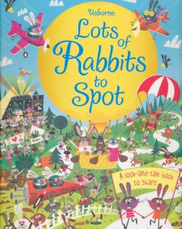 Usborne Lots of Rabbit to Spot