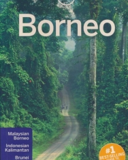 Lonely Planet - Borneo Travel Guide (5th Edition)
