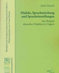 Németh Attila: Dialekt, Sprachmischung und Spracheinstellungen