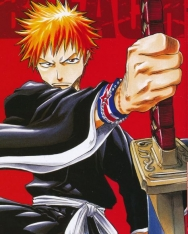 Tite Kubo:Bleach Vol. 1: 3-in-1 Edition, Includes vols. 1, 2, 3
