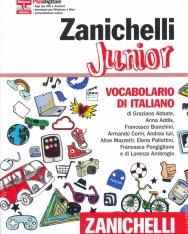 Zanichelli Junior - Vocabolario di italiano - Con aggiornamento online