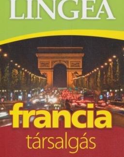 Francia társalgás szótárral és nyelvtani áttekintéssel