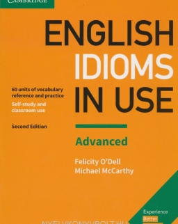 English Idioms in Use Advanced 2nd Edition