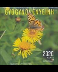 Gyógynövényeink falinaptár 2020 (22x22)