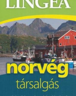 Norvég társalgás szótárral és nyelvtani áttekintéssel