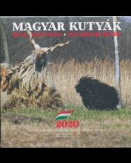 Magyar kutyák falinaptár 2020 (22x22)
