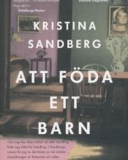 Kristina Sandberg: Att Föda Ett Barn