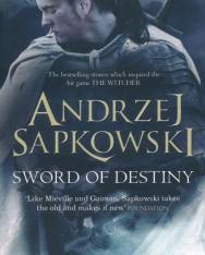 Andrzej Sapkowski: Sword of Destiny