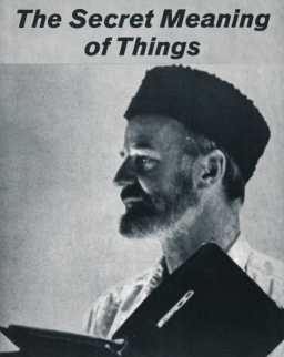 Lawrence Ferlinghetti: The Secret Meaning of Things