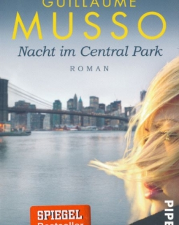 Guillaume Musso: Nacht im Central Park