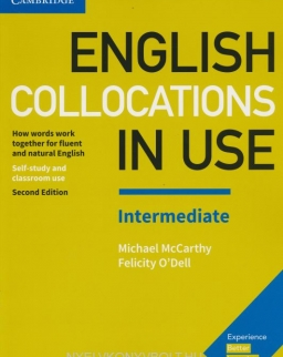 English Collocations in Use Intermediate 2nd Edition