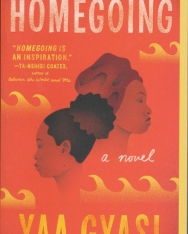 Yaa Gyasi: Homegoing