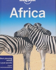 Lonely Planet - Africa Travel Guide (13th Edition)