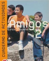 Aula Amigos 2 Cuaderno