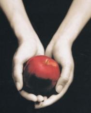 Stephenie Meyer: Fascination  - Twilight Saga 1 francia nyelven