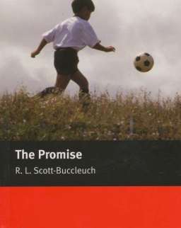 The Promise - Macmillan Readers Level 3
