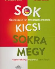 Sok kicsi sokra megy - Übungsbuch für Ungarischlernende