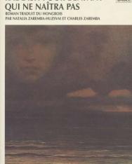 Kertész Imre: Kaddish pour l'enfant qui ne naitra pas (Kaddis a meg nem született gyermekért francia nyelven)