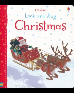 Felicity Brooks: Christmas (Look and Say)
