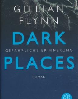 Gillian Flynn: Dark Places - Gefährliche Erinnerung